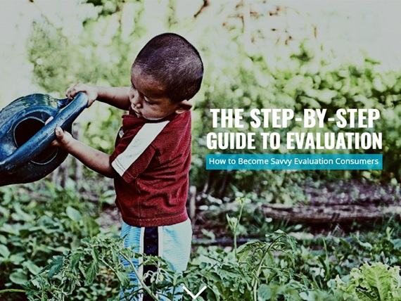 The Step-by-Step Guide to Evaluation cover art